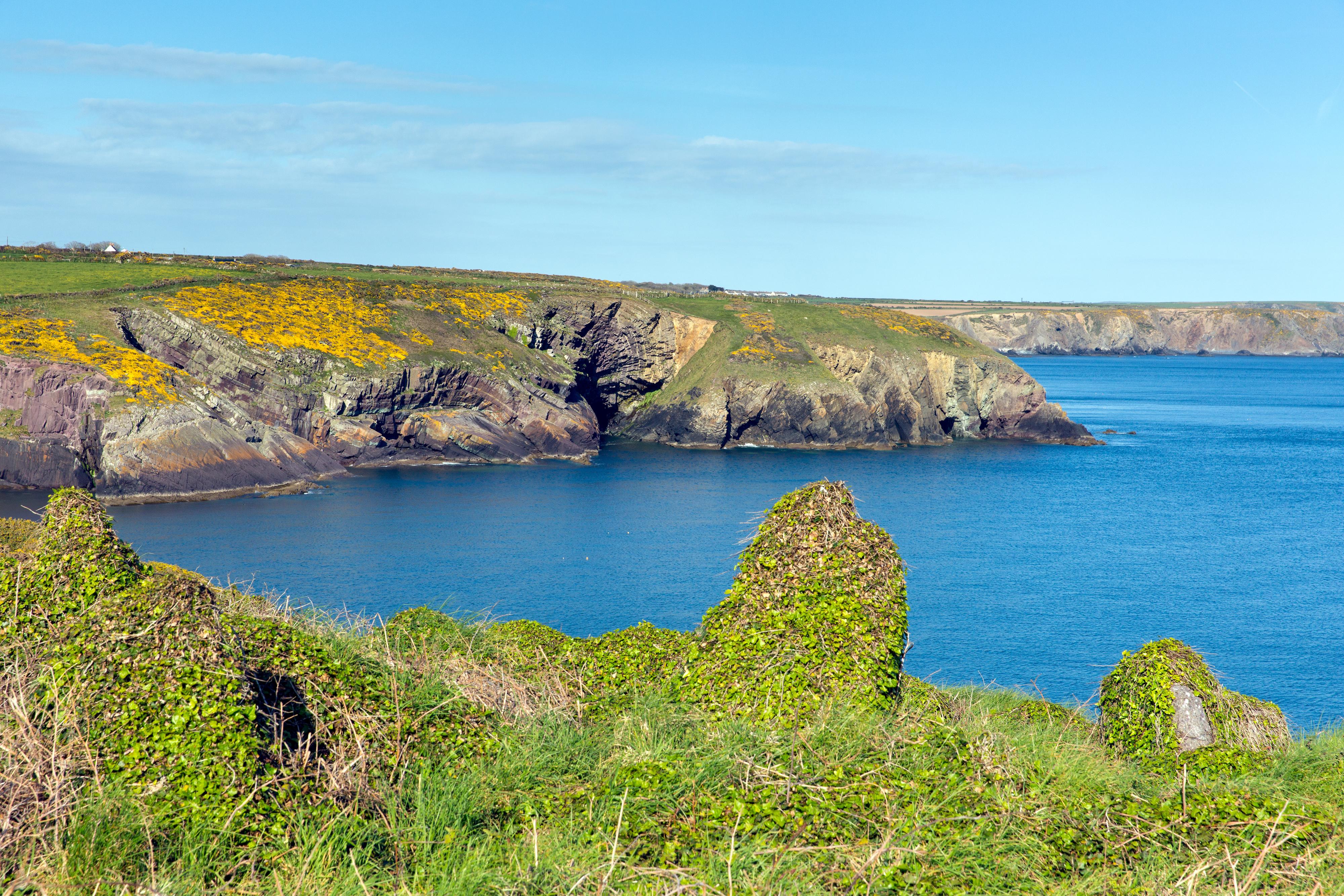 Pembrokeshire - Pembrokeshire, And Carmarthenshire
